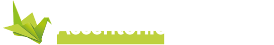 cropped-accentonic-logo.png